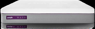 Purple Hybrid Premier Homepage