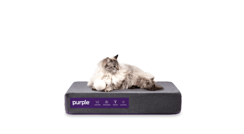 Pet Bed Small