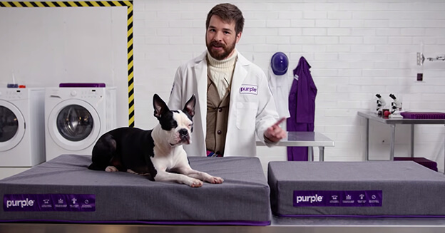 The Purple® Pet Bed: Comfort fur all.